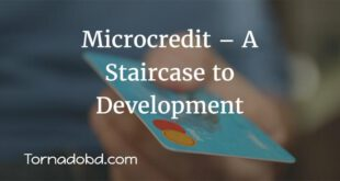 Microcredit–A-Staircase