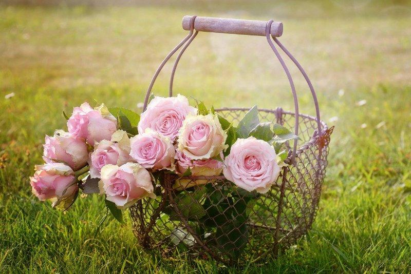 Flower Garden Home